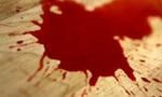 Blood  landscape