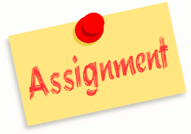 of course assignment editing services