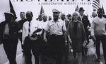 Civil rights  landscape