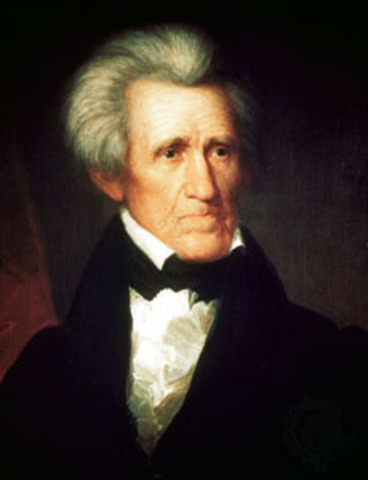 andrew jacksons presidency As president of the united states of america, andrew jackson invited change,  increased patriotic pride and introduced democracy as he lead the country.