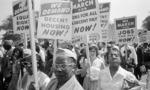 Civil rights protest  landscape