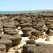Stromatolites,%20hamelin%20pool,%20shark%20bay_small_square
