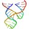 Minimal hammerhead ribozyme structure