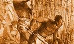 Slaverycanecutters  landscape