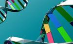Genetics  landscape