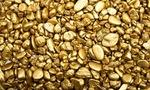 Gold nuggets  landscape