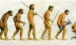 Evolucion tecnologica  landscape