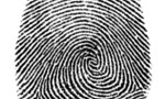 Fingerprint_tiny_landscape