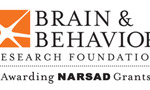Brain behavior narsad 1665c  landscape