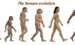 Hehomo sapiens sapiens avatariensis  landscape