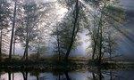 Luz tenue  landscape