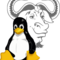 Gnulinux_small_square