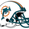 Dolphins helmet