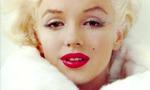 Marilyn monroe 11  landscape