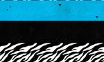 Zebra stripes 169  landscape