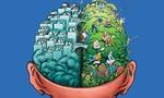 Ff 70 brain1 f  landscape