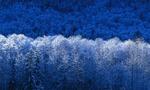Invierno  landscape