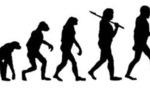 Evolution  landscape