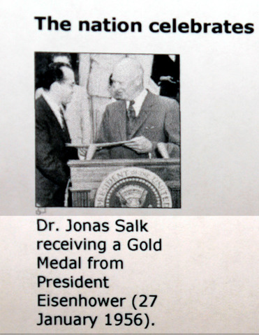the timeline of jonas salk Jonas salk when news of the vaccine's success was made public on april 12, 1955, salk was hailed as a miracle worker and the day almost became a national holiday around the world, an immediate rush to vaccinate began, with countries including canada, sweden, denmark, norway, west germany, the netherlands, switzerland, and belgium planning to begin polio immunization campaigns using salk's vaccine.