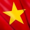 Vietnam flag small square