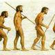 Evolucion humana 646622