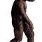 171australopithecus