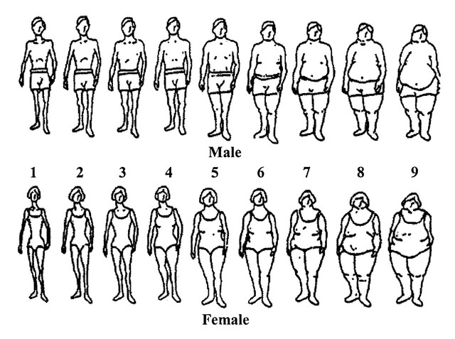 'Perceptions of Body Image throughout History' timeline ...
