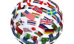 Global studies  landscape