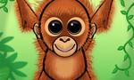 Orangutang   karlie  landscape