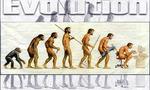 Evolucion2  landscape