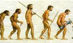 Evolucion  landscape