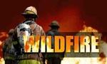 Wildfire  landscape